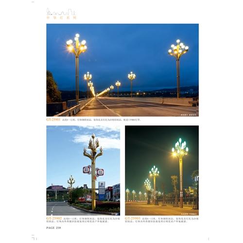 专业生产LED道路照明玉兰灯