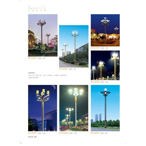 非标工程LED广场景观玉兰灯